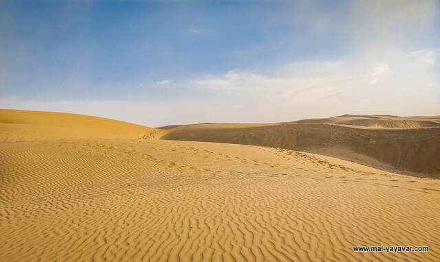 1609929183_818350-desert-safari-blog.jpg