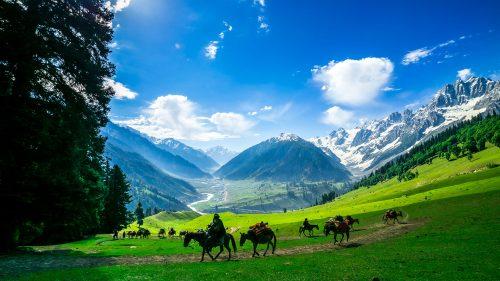 1610020364_701679-Greaves_Kashmir-500x0-c-default.jpg