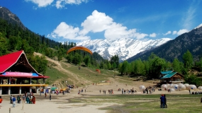 Exotic Manali by Bus