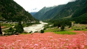 Himachal off-Beat with Manali