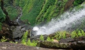 1630995739_64296-Karnataka-Tamilnadu-Paradise.jpg